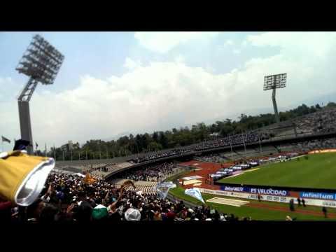 LA REBEL, Goya con el equipo, PUMAS vs cruz azul - La Rebel - Pumas