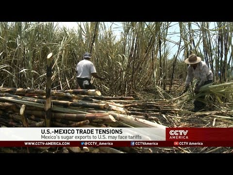 U.S.-Mexico Trade Tensions Over Possible Tariffs on Sugar Exports