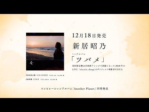 , title : '新居昭乃ミニアルバム「ツバメ」トレイラー'