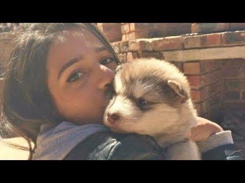 Video Kadın Küçücük Bir Köpeği Evlât Edindi ama köpek büyüyünce herkesin ağzı açık kaldı download in MP3, 3GP, MP4, WEBM, AVI, FLV January 2017