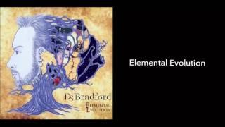 <b>D S Bradford</b>  Elemental Evolution Audio
