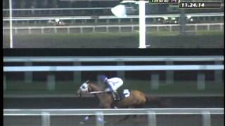 RACE 5 APPOINTMENT 11/29/2014
