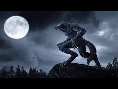 Video Efsanevi 7 Mitolojik Yaratık ( Sesli Anlatım ) download in MP3, 3GP, MP4, WEBM, AVI, FLV January 2017