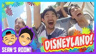 Video Disneyland Trip! MP3, 3GP, MP4, WEBM, AVI, FLV September 2018
