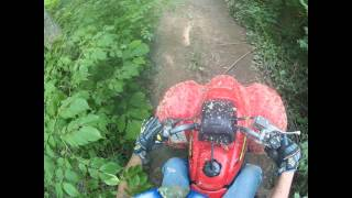9. Enon OH - Honda Sportrax 250EX - Wooded Trails 05