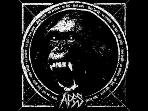 APES - Rotten world