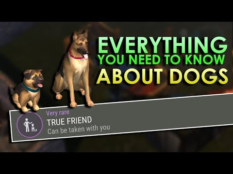 Dogs Explained (How To Get True Friends Trait & More) - Last Day On Earth: Survival 1.7.12