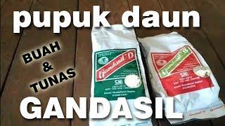 Video Review Pupuk daun Gandasil B & D MP3, 3GP, MP4, WEBM, AVI, FLV September 2018
