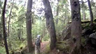 Video Grizzly Bear Encounter MP3, 3GP, MP4, WEBM, AVI, FLV Mei 2017