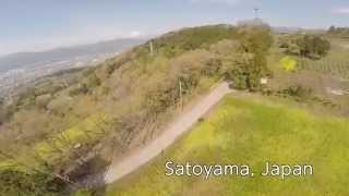空撮 / 神奈川県松田 菜の花畑
