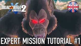 Expert Mission Tutorial #1