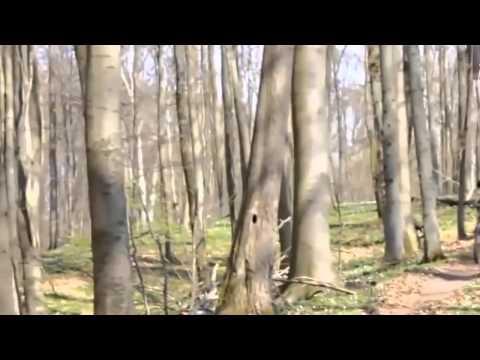 Video hài hước nhất quả đất cười bể bụng - Phần 15