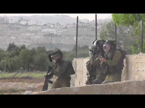 """ערבים משפילים חיילים, וזה """"עצמאות"""""""