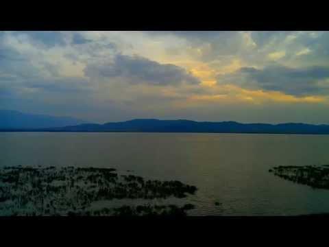 Zbulohen Piranha në liqenin e Dojranit në Maqedoni (Video)