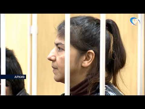 Вынесен приговор по уголовному делу в отношении двух жителей Боровичского района