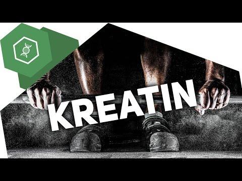 Was ist Kreatin?! - Nahrungsergänzungsmittel
