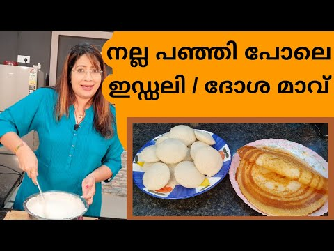 How To Make The Perfect Idli Dosa Batter| അടിപൊളി ഇഡ്ഡലി - ദോശ മാവിന്റെ കൂട്ട് | Lekshmi Nair