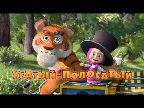 20. Tygr na návštěvě