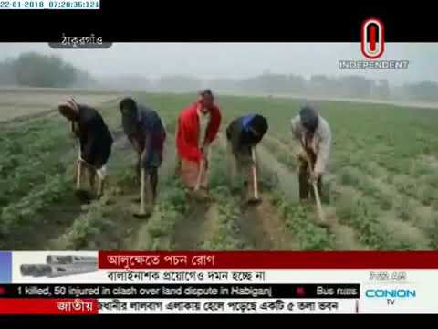 Rot diseases of potatoes (22-01-2018)