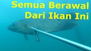 """Download Video Nembak Ikan di Danau Toba """"Ikanya tiba2 muncul disamping saya!!!"""" MP3 3GP MP4"""
