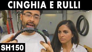 8. CINGHIA E RULLI SH 150 - SH 125