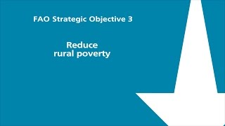FAO Strategic Objective 3