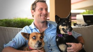 Max Scherzer: Help pets and people with Pets For Life - YouTube