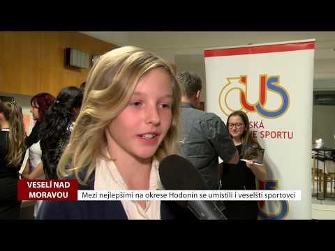 TVS: Deník TVS 13. 2. 2019