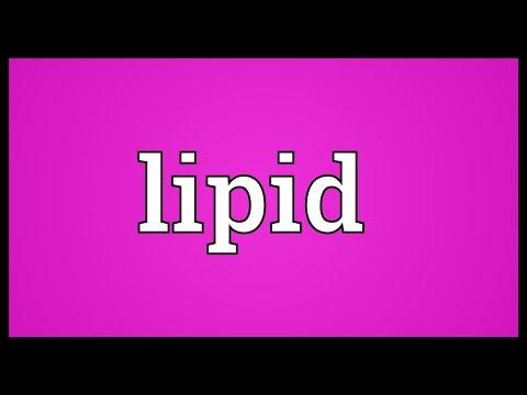 Lipid Meaning