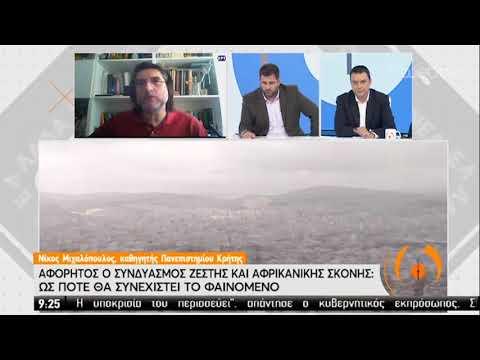 Μιχαλόπουλος: «Εδώ και 150 χρόνια δεν είχαμε τέτοιες θερμοκρασίες» | 15/05/2020 | ΕΡΤ