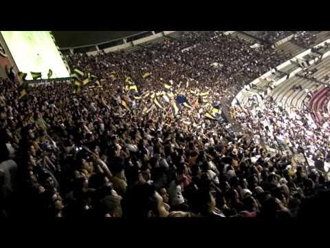 Pumas Rebel - Como te va crema. Exclusivo !!! - La Rebel - Pumas - México - América del Norte