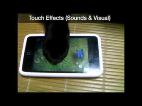 Video of Cat Toy Plus