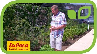 Chris Smith, founder of Pennard Plants, presents the advantages of Szechuan Pepper