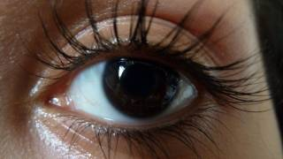 Video How to Grow Long, Thick, Healthy Lashes MP3, 3GP, MP4, WEBM, AVI, FLV September 2018