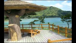 Amami Island Japan  City new picture : amami island japan