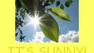 Summer Vocabulary Lesson, Seasons Vocabulary, Basic ESL Lessons
