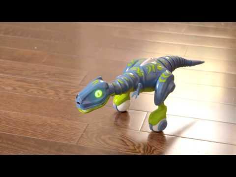 Zoomer Dino Jester