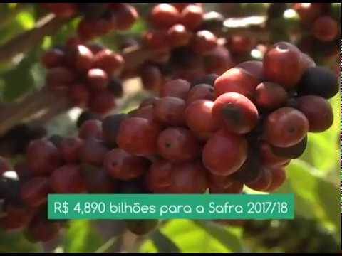 CNA EM CAMPO: CNA e Entidades do Agro pedem mudança no comando da política de irrigação