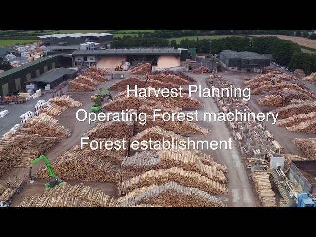 Forestry Careers Ireland