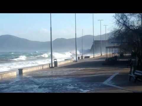 La spiaggia delle Ghiaie - video di Serena Nastri