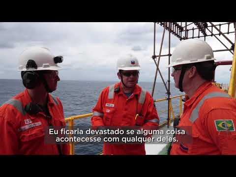 Vozes de offshore