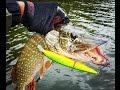 Видео - Трудовая рыбалка на щуку осенью - видео отчет.