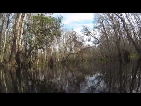 GoPro 3 Black Edition on the Ichetucknee River.