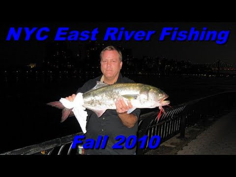 NYC East River Urban Fishing – Fall 2010