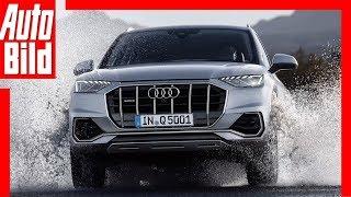 Audi Q5 (2020): Facelift - Skizze - SUV - Infos by Auto Bild