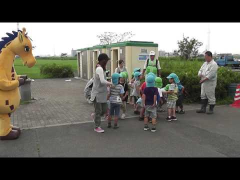 ほりきりん&小谷野しょうぶ保育園児が一緒にコスモスの種をま