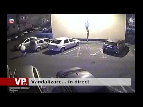 Vandalizare… în direct