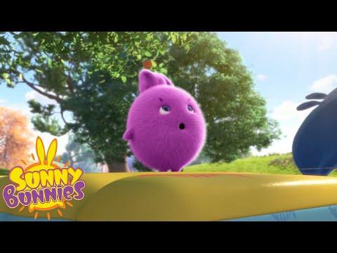 Cartoons For Children   SUNNY BUNNIES - BOUNCING HERO   New Episode   Season 3