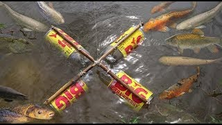 Hello Everyone! Greeting from Cambodia!Today i want to show you about: Easy Coca Cola Bottle Fish Trap To Catch A Lot Of Fish By A Smart Boy in my village.If you enjoy this video click Thumb Up and Subscribe our CHANNEL for more videos;Follow me!Google Plus: https://goo.gl/7tltUZFacebook: https://www.facebook.com/7DDaily/Twitter: https://twitter.com/7ddailyPinterest: https://www.pinterest.com/7ddaily/Thank you for watching my video!