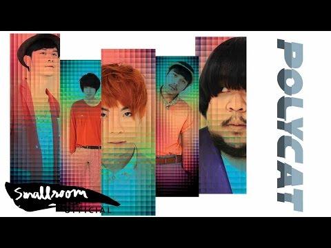 Polycat - จะเอาอะไร [official Single]